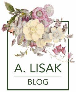 blog historyczny